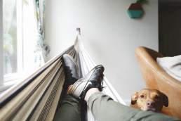 man in a hammock, dog looking on