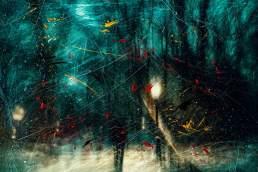 absract lights and christmas trees